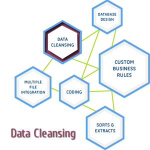 data cleansing service